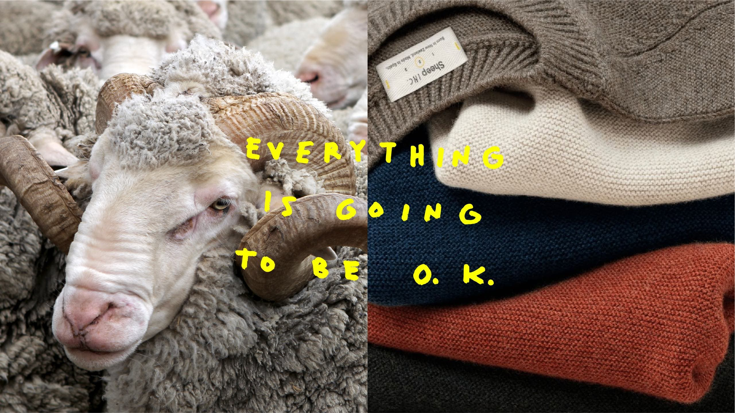 stupidstudio_case_brandstrategy_SHEEPINC-VISUAL-everything-is-ok
